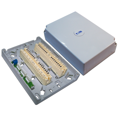 Настенная коробка с установленными плинтами, 2 размыкаемых плинта, 20 пар, пластик TWT-DB10-2P-DIS TWT-DB10-2P-DIS